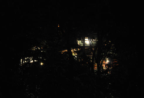 TreeTop House at night