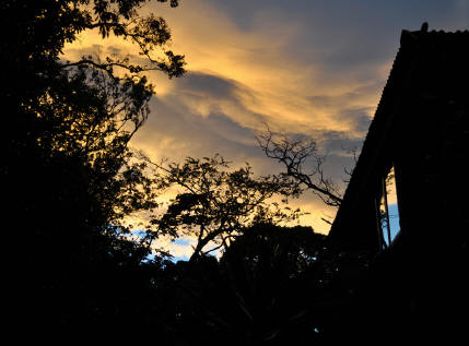 TreeTop House in Monteverde at sunset